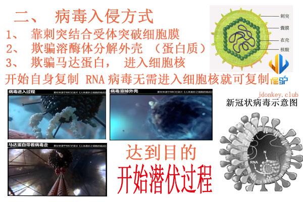 2病毒入侵方式.jpg